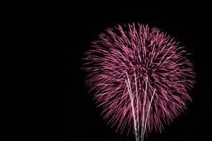 花火大会 ・ 君がいた夏は 遠い夢の中 空に消えてった打ち上げ花火…(Whiteberry 夏祭り より)の写真素材 [FYI01205927]