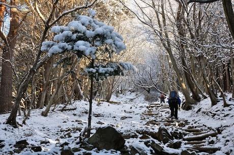 雪山の写真素材 [FYI01206263]
