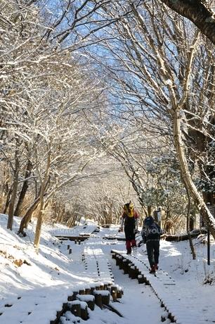 雪山の写真素材 [FYI01206264]