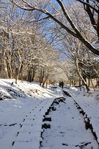 雪山の写真素材 [FYI01206265]