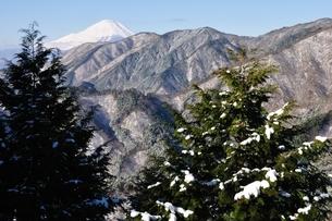 雪山の丹沢より富士山の写真素材 [FYI01206274]