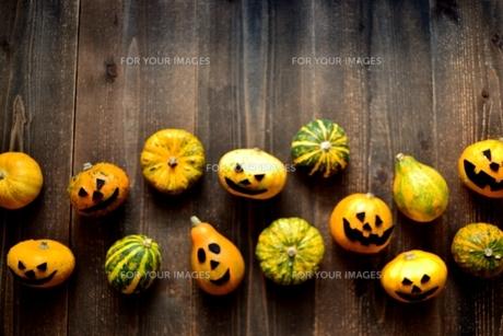 ハロウィンのかぼちゃたちの写真素材 [FYI01206386]