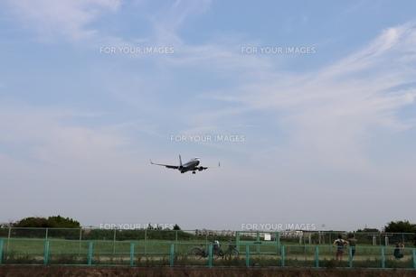 青空を飛ぶ飛行機の写真素材 [FYI01206500]