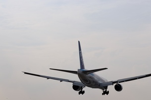 着陸する飛行機の写真素材 [FYI01206510]
