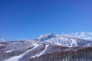 スキー場の写真素材 [FYI01206669]