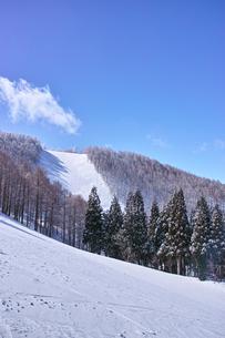 スキー場の写真素材 [FYI01206673]