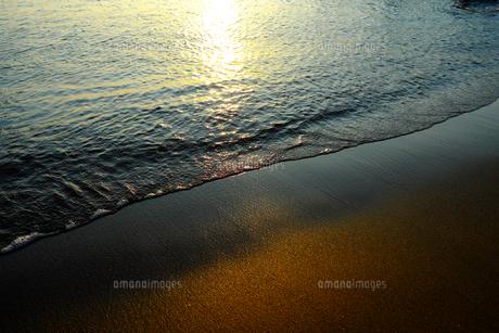 浜辺の写真素材 [FYI01206702]