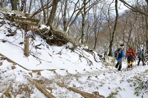 雪山の写真素材 [FYI01206709]