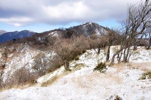 冬の塔ノ岳の写真素材 [FYI01206717]