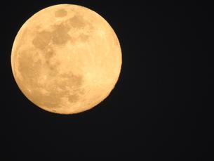 満月の写真素材 [FYI01207348]