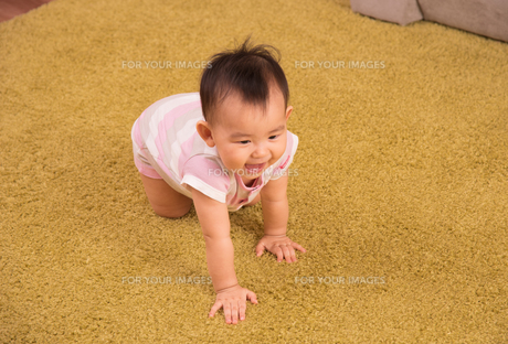 赤ちゃん・ハイハイの写真素材 [FYI01207418]