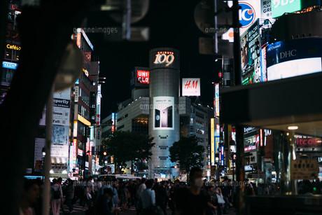 夜の渋谷スクランブル交差点の写真素材 [FYI01207434]