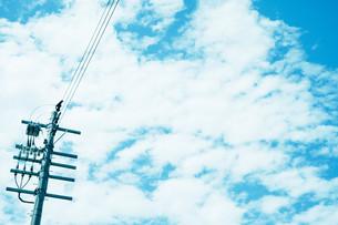 青空と電柱の写真素材 [FYI01207443]