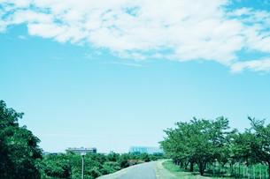 青い空と河川敷の写真素材 [FYI01207444]