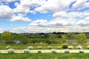 雲が広がる河原からの風景の写真素材 [FYI01207503]