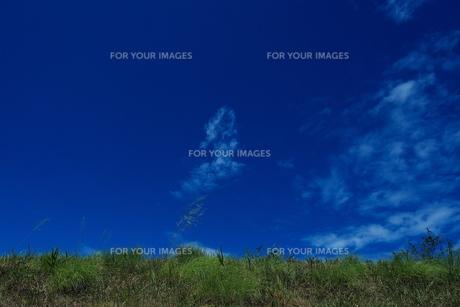 青空の写真素材 [FYI01207529]