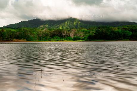 冒険の島の写真素材 [FYI01207601]