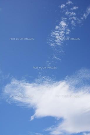 秋の風景の背景素材 ・ 青空と白い雲の写真素材 [FYI01207715]