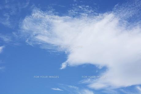 秋の風景の背景素材 ・ 青空と白い雲の写真素材 [FYI01207716]