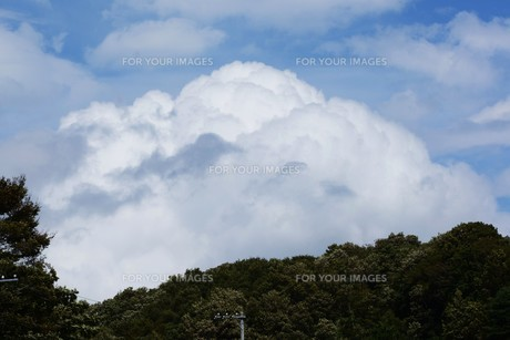 秋の風景の背景素材 ・ 青空と白い雲の写真素材 [FYI01207718]