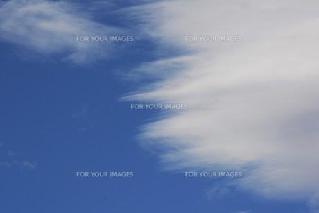 秋の風景の背景素材 ・ 青空と白い雲の写真素材 [FYI01207722]