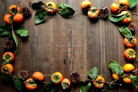 柿とまつぼっくりの写真素材 [FYI01207735]