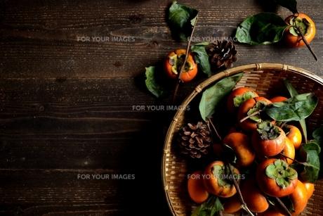 ざるに盛った柿とまつぼっくりの写真素材 [FYI01207743]