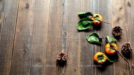 柿とまつぼっくりの写真素材 [FYI01207747]