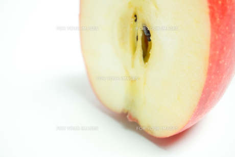 リンゴの断面 白色背景の写真素材 [FYI01207771]