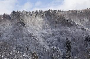 岐阜県白川村の初冬の山並みの写真素材 [FYI01207960]