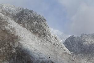 霧氷に覆われた奥飛騨の初冬の山並みの写真素材 [FYI01207962]