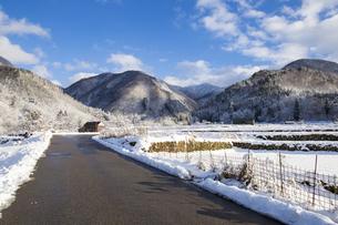 岐阜県白川村の初冬の風景の写真素材 [FYI01207963]