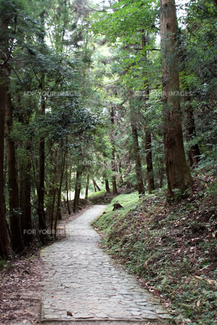 山の辺の道の風景の写真素材 [FYI01208102]