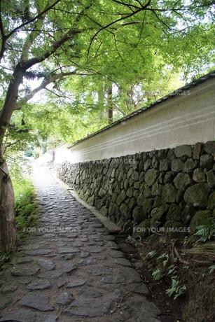 山の辺の道の風景の写真素材 [FYI01208103]