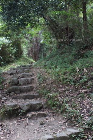 山の辺の道の風景の写真素材 [FYI01208114]