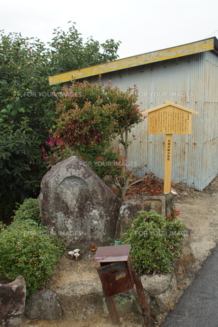 山の辺の道の風景の写真素材 [FYI01208120]