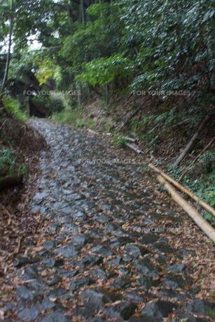山の辺の道の風景の写真素材 [FYI01208122]