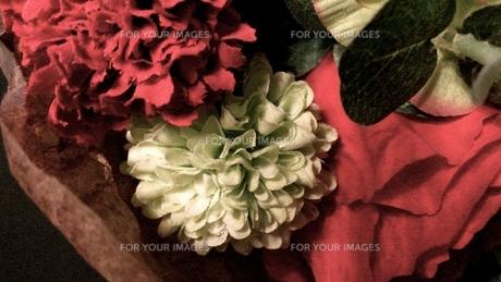 紅い花 (造花)の写真素材 [FYI01208226]