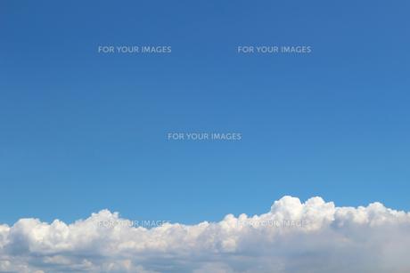 青空に広がる夏の雲の写真素材 [FYI01208318]