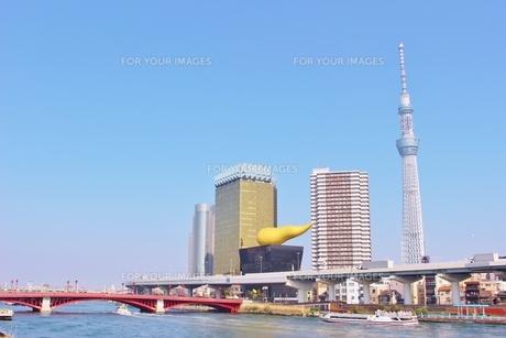 東京スカイツリーと隅田川の写真素材 [FYI01208522]