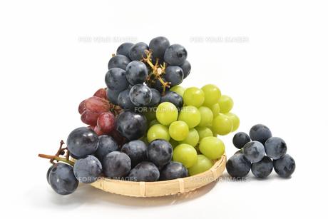 ザルの葡萄の写真素材 [FYI01208541]