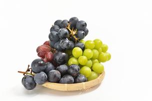 ザルの葡萄の写真素材 [FYI01208543]
