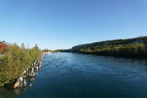ホワイトホースを流れるユーコン川の写真素材 [FYI01208812]