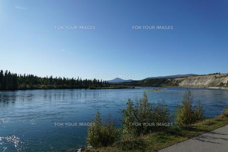 ホワイトホースを流れるユーコン川の写真素材 [FYI01208813]