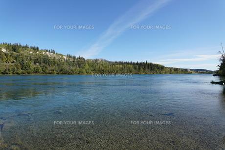 ホワイトホースを流れるユーコン川の写真素材 [FYI01208814]
