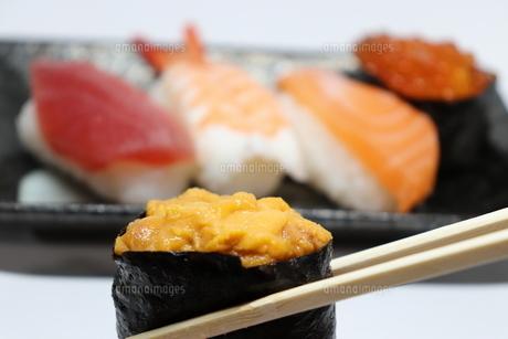 お箸で持った雲丹の軍艦とお寿司の盛り合わせの写真素材 [FYI01208829]