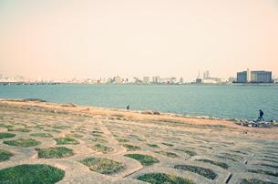 淀川 堤防の写真素材 [FYI01209122]