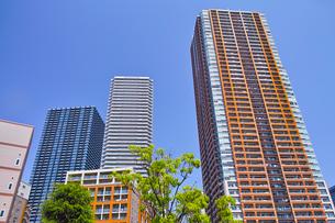 武蔵小杉の高層マンションの写真素材 [FYI01209464]