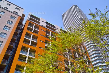 武蔵小杉の高層マンションの写真素材 [FYI01209466]