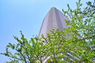 武蔵小杉の高層マンションの写真素材 [FYI01209467]